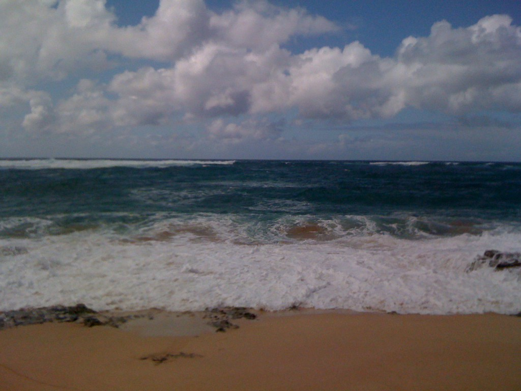 A picture of the real North Shore on Oahu.  It's like the movie without the terrible characters.